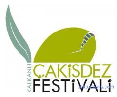 7.Kalkanlı Çakisdez Festivali
