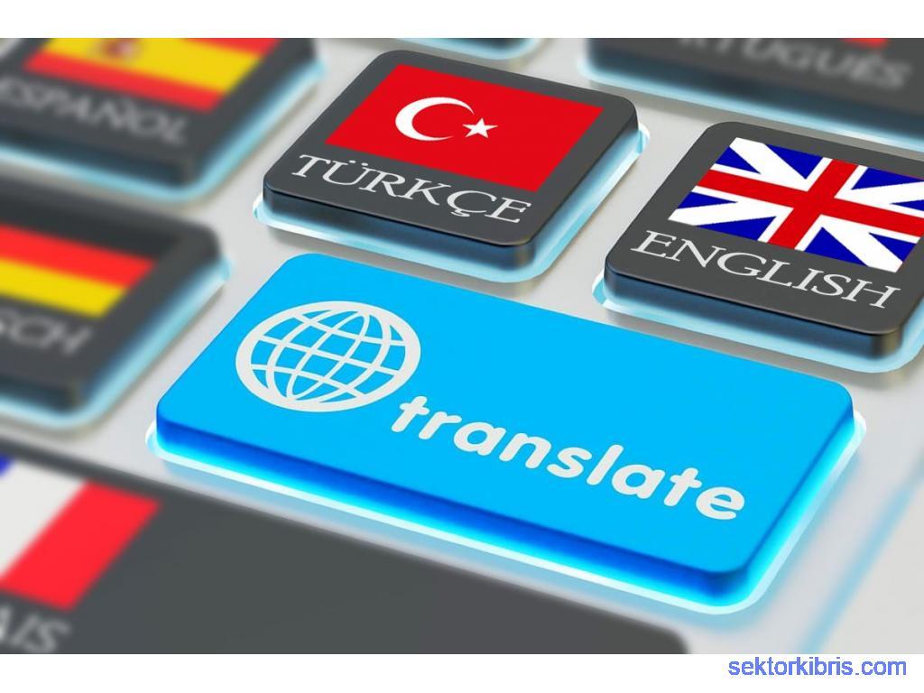 Profesyonel İngilizce Çeviri - Professional Turkish Translation